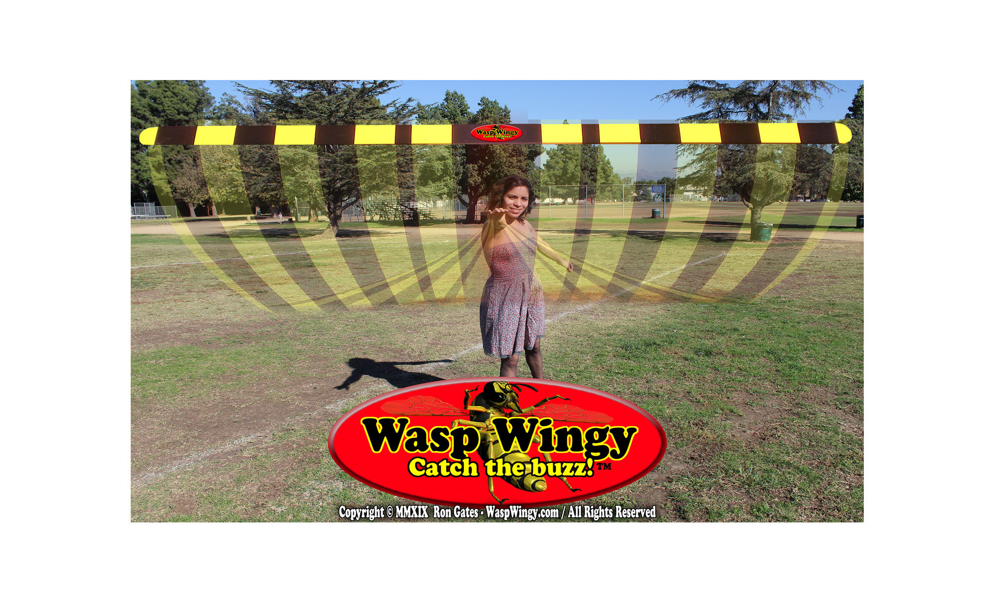 Wasp Wingy